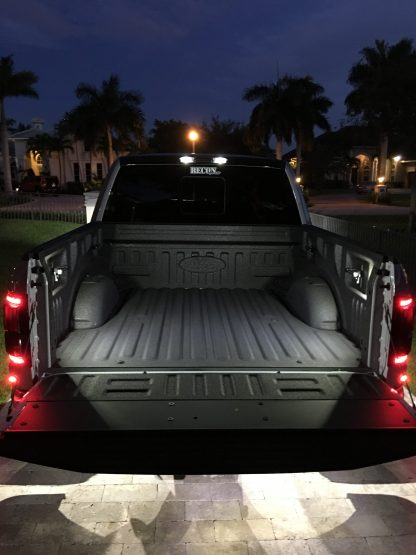 Ford F150 Raptor 15-19 & Super Duty 17-19 OEM Direct Replacement LED Bed Light Kit
