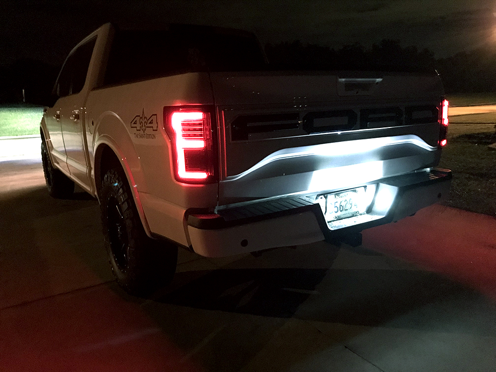 Ford F150 15-17 & Raptor 17-19 Tail Lights OLED in Smoked